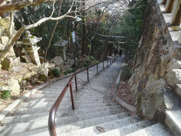 taroubou-higashioumi-021.jpg