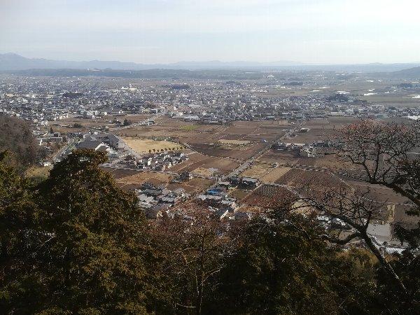 taroubou-higashioumi-051.jpg