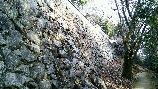 岩国城石垣