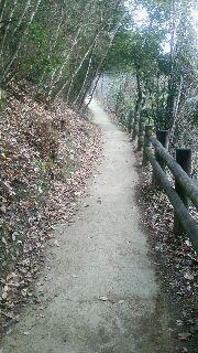 松山までの山道