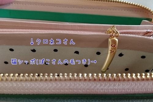 180203-05.jpg