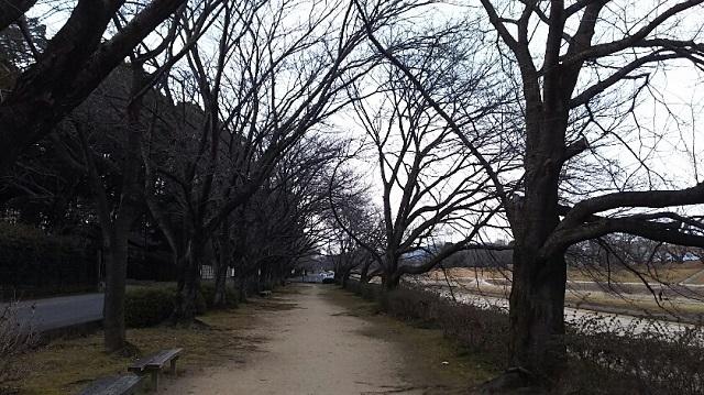 180221 後楽園外苑② ブログ用