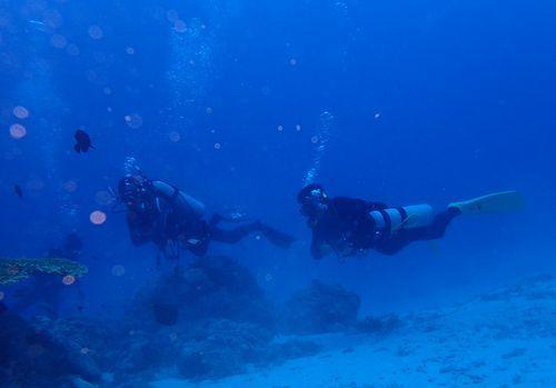 沖縄那覇市観光おすすめプラン2018年平成30年体験ダイビング未経験者初心者高齢者泳げない楽しめる