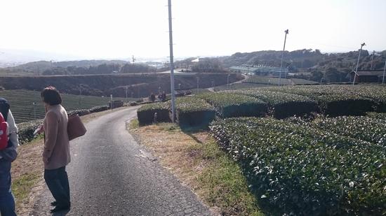 DSC_9809.jpg