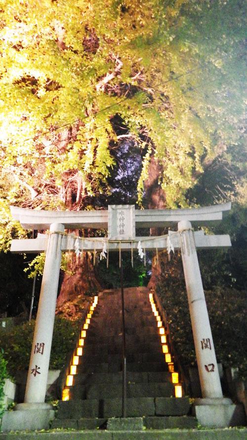 水神神社のイチョウ