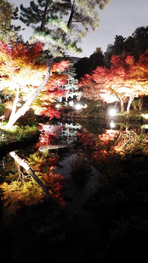 池に浮かぶ紅葉 「甘泉園」