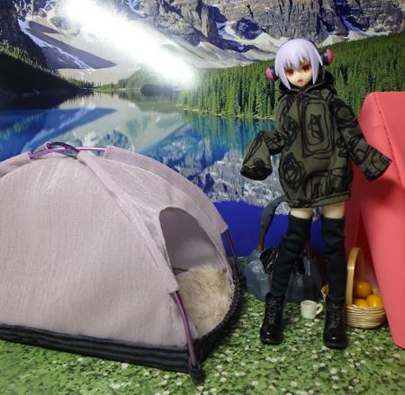 30_1_19 なんちゃってテント 2