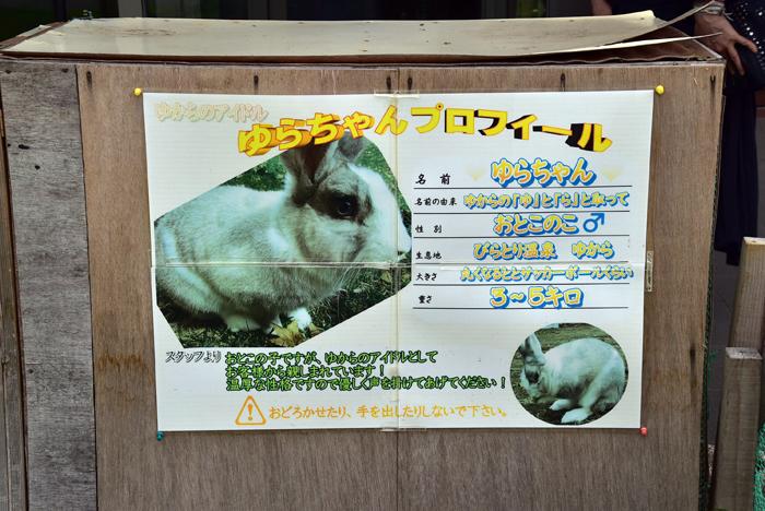2017-08-04 ゆから 016