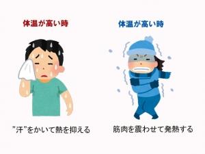体温について