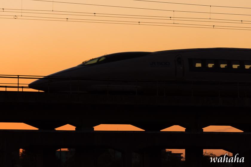 291202kanagasaki-6.jpg