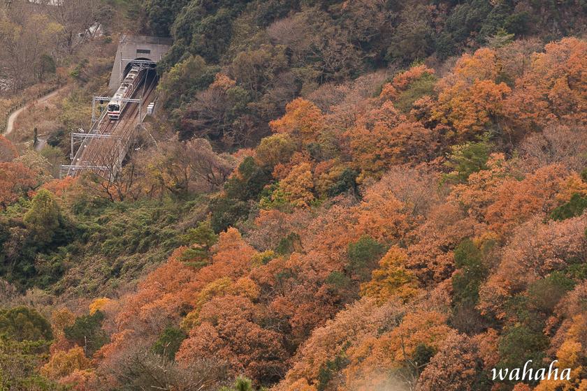 291210kikusuiyama-04.jpg