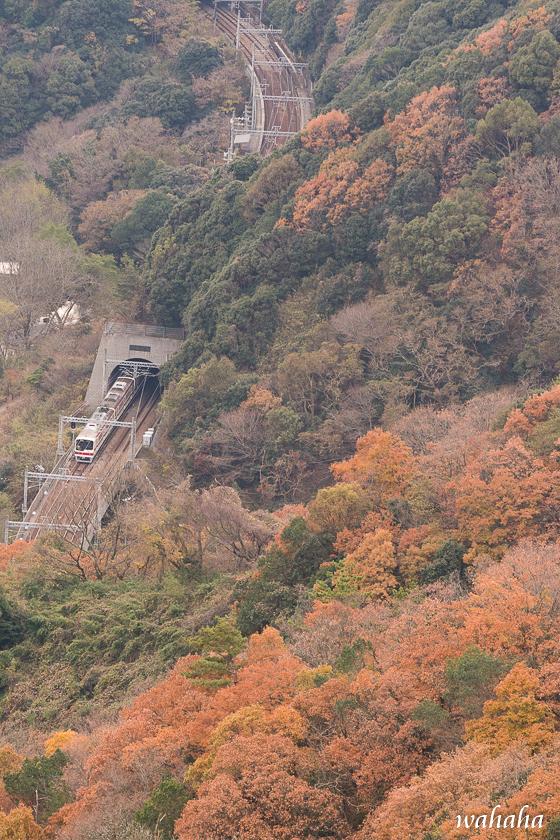 291210kikusuiyama-045.jpg