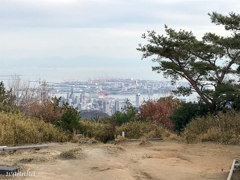 291210kikusuiyama-10.jpg