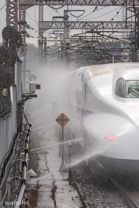 291217maibaraeki-3.jpg