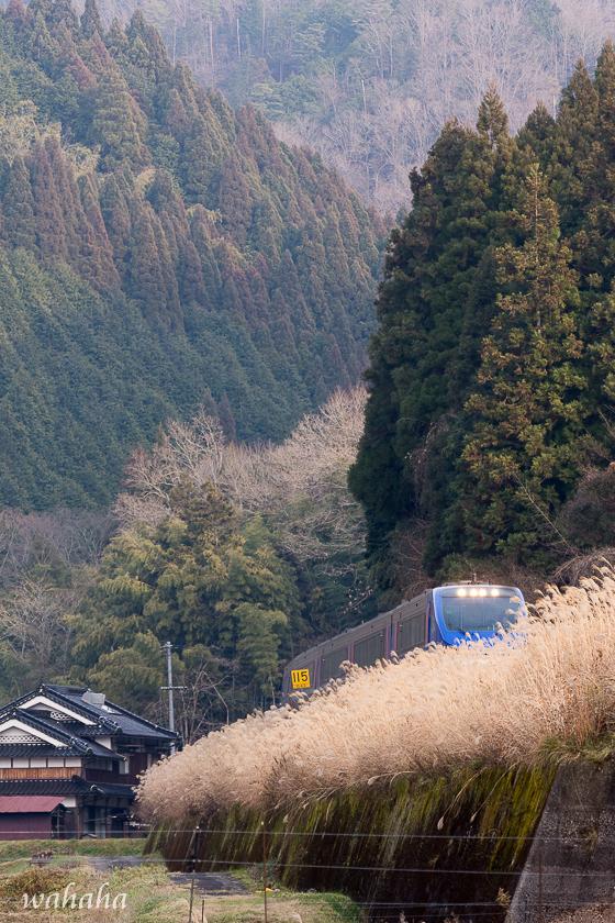 291223chizukyu-3.jpg