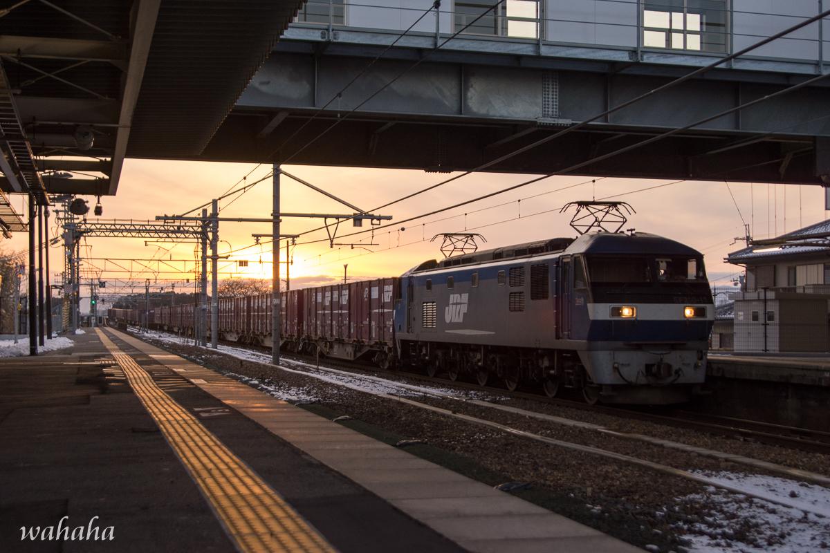 300114sinohara-4.jpg