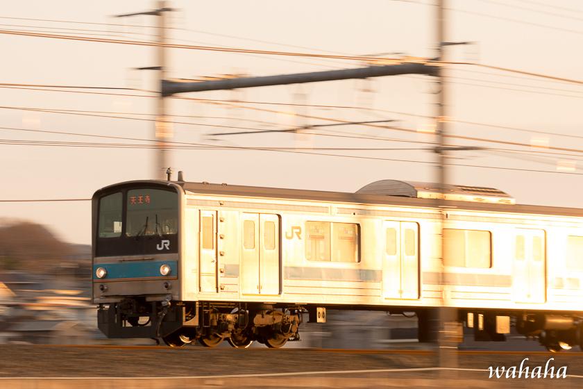30021hanwasen-2.jpg