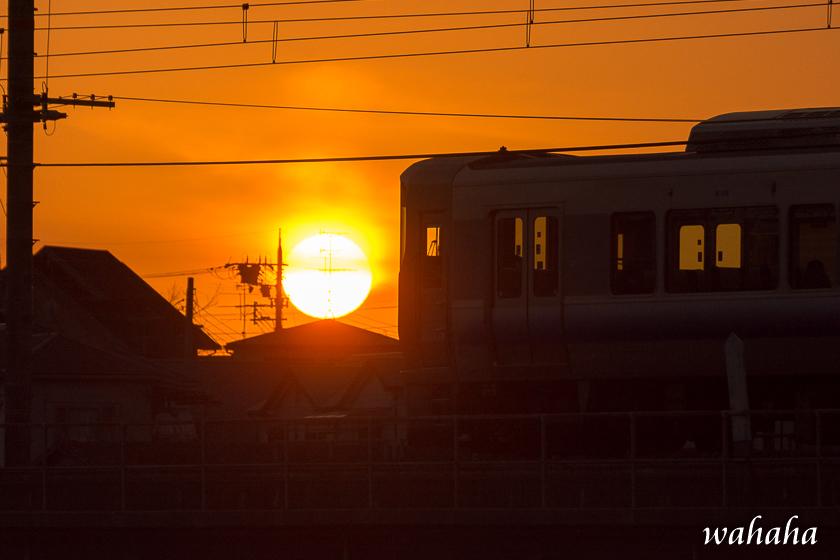 30021hanwasen-4.jpg