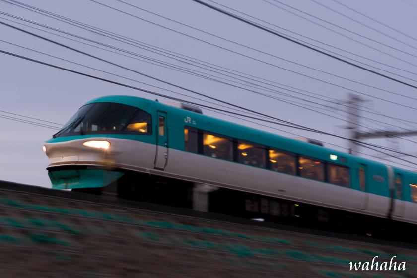 30021hanwasen-5.jpg