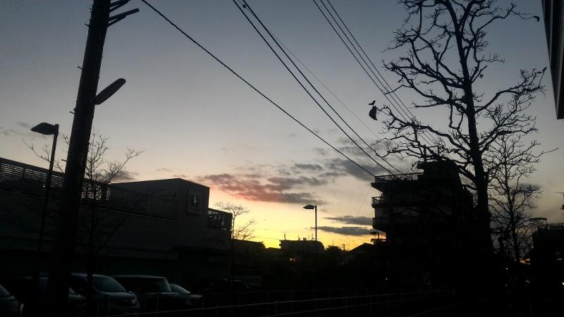 今年の夜明け