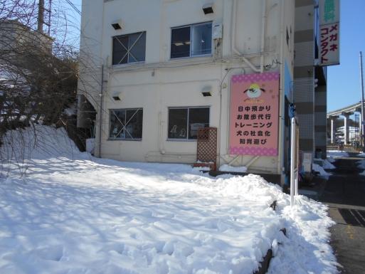 DSCN6818.jpg