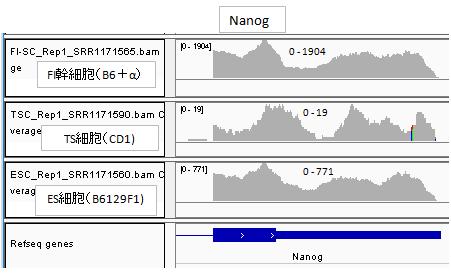 nanog.png