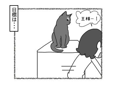 02012018_cat2mini.jpg