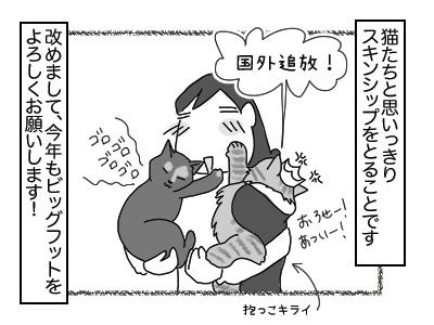 02012018_cat3mini.jpg