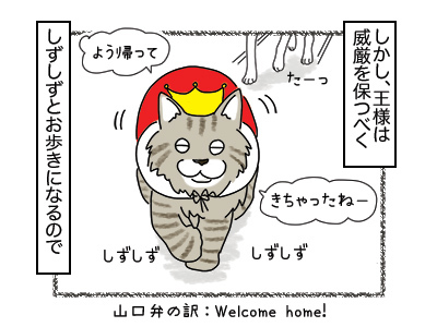 14022018_cat3mini.jpg