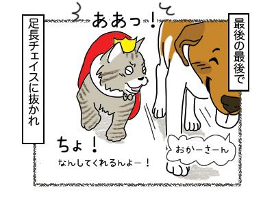 14022018_cat4mini.jpg