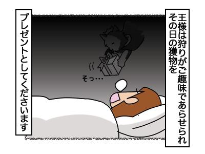 15022018_cat1.jpg