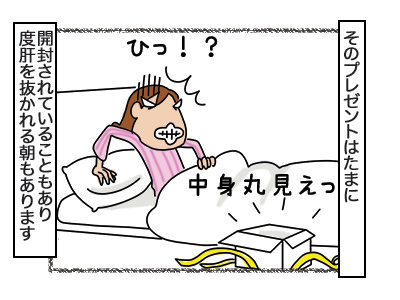 15022018_cat2.jpg