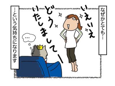 17012018_cat2mini.jpg