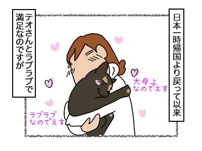 17022018_cat1mini.jpg