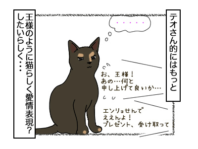 17022018_cat2mini.jpg