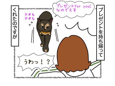 17022018_cat3mini.jpg