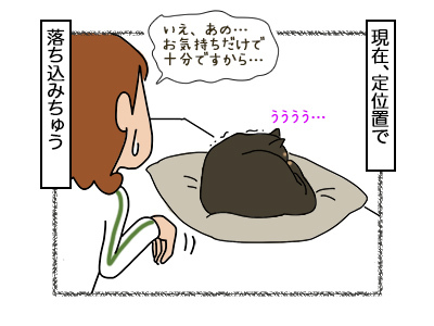 17022018_cat5mini.jpg