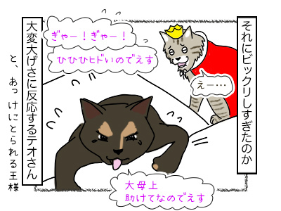19022018_cat3mini.jpg