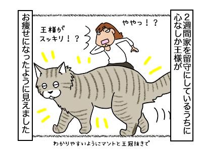 20022018_cat1mini.jpg