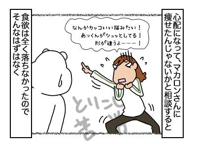 20022018_cat2mini.jpg