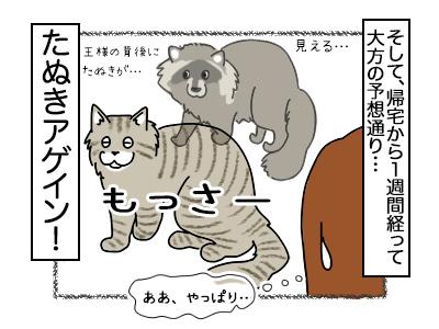 20022018_cat4mini.jpg