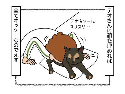 22012018_cat4miniB.jpg