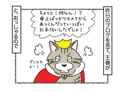 23012018_cat1mini.jpg