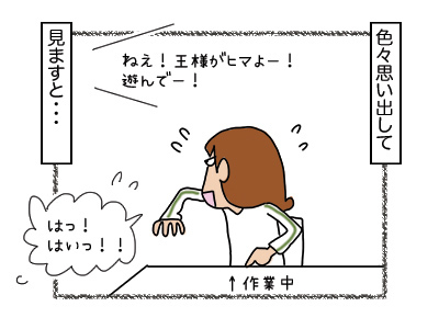 23012018_cat2mini.jpg