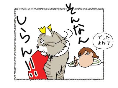 23012018_cat5mini.jpg