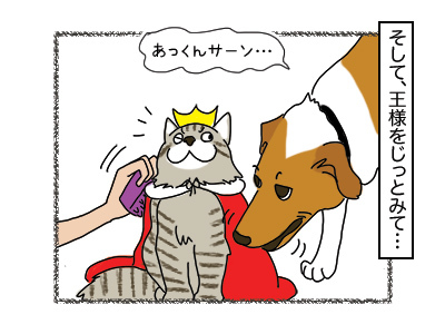 24012018_cat2mini.jpg