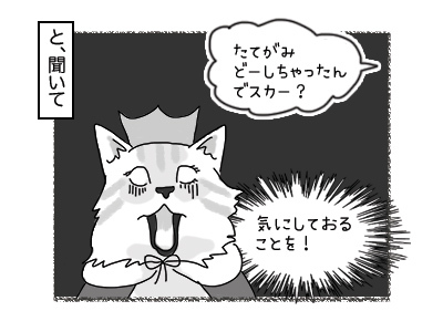 24012018_cat3mini.jpg
