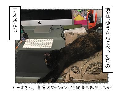 25012018_cat1mini.jpg