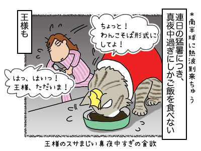 25012018_cat2mini.jpg