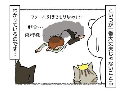 25012018_cat4mini.jpg